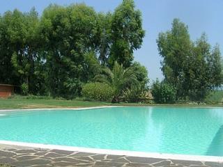 Casalaccio Villa Sleeps 4 with Pool and WiFi - 5229375