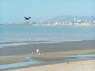 View from Tombreck toward Sovereign Harbour,Eastbourne and Beachy Head at low tide.