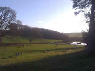 Early spring views at Kilhenzie Farm.