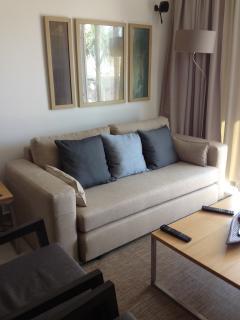 Lounge Sofa Bed