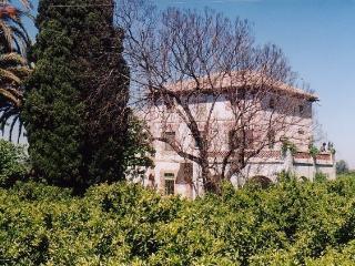 Villa para reuniones y familias, Polinya de Xuquer