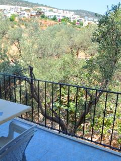 The second bedroom balcony overlooks open olive groves