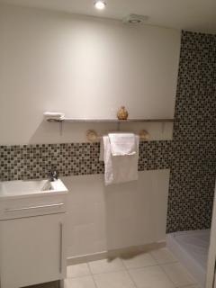 Bertrand Shower Room