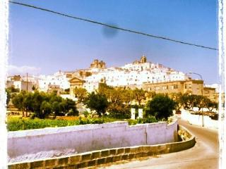 La Casodda - Vacations far from all!!! Beach, Ostuni, Salento