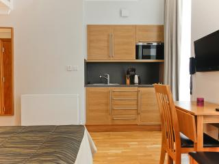 Studio Apartment in Bloomsbury, Londres