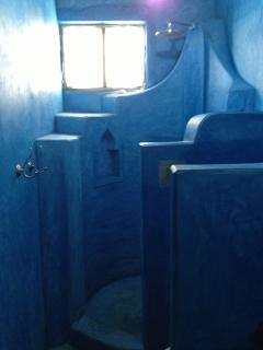 shower in the blue ensuite bathroom