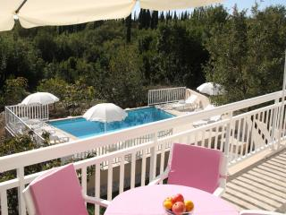 3.Villa Peric  with private pool - Apartment no 3
