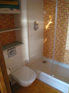 The bathroom is also modern with a walk-in shower with oversized shower head, built-in shelving...