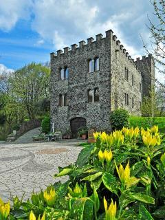 All'interno della proprietà c'è un piccolo castello da visitare