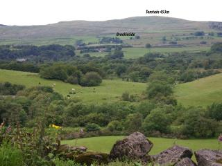 Brockieside from across the valley at Dullatur showing Tomtain above.