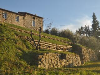 the terraces in front of the farmhouse made ??of stone and wood piles