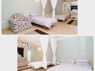 Cozy & spacious penthouse furnished with 1 queen size bed & 1 single bed. Extra mattresses a