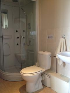 Sword en-suite bathroom with toilet, shower and sink.
