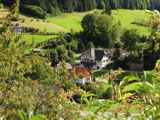 Hostal Black Forest/selva negra a aprtir de 10 €, Bad Rippoldsau-Schapbach