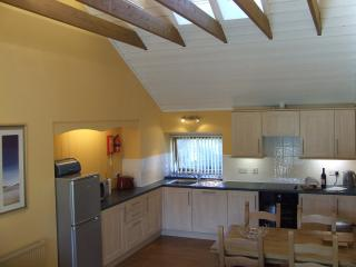Spacious, open plan kitchen and dining room with high beamed ceiling.