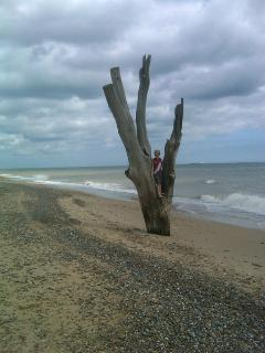 Suffolk has some wild,unspoilt natural beaches where you can find peace, solitude and some odd stuff