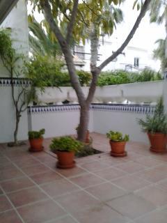 terraza a jardin interior