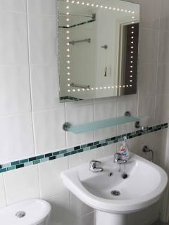 LED lights & heated mirror
