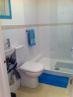 Ground floor Cloakroom with rainflow double  shower