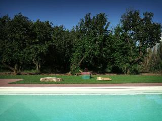 Le Caiole - Castagno / Chestnut. The swimming pool.
