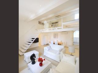 Loft en duplex dans Hôtel Particulier proche Forum, Arles