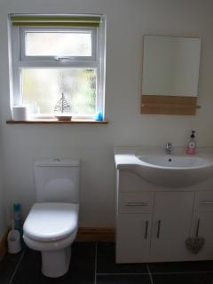 Large downstairs WC