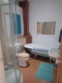 bathroom with original cast-iron bath and ultra-modern shower