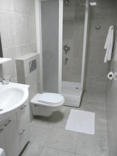 Bathroom: shower,sink and wc.