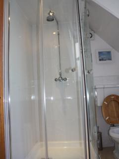 Family bathroom with a rather spacious shower