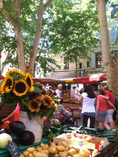 its markets, gastronomy, calissons, provencal cooking recipes, vineyards, fairs and antique...
