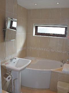 Ramey 1st Floor Family bathroom with shower and searate bath