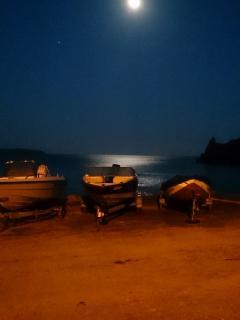 Moonlit night in April