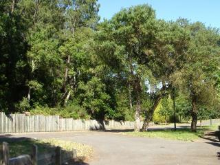 La maison se situe en lisière de forêt, au fond d'1 impasse, quartier résidentiel très