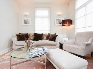 Luxury Apartment in Chelsea with terrace
