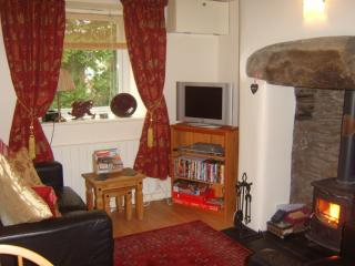 Lounge area with comfortable seating and a cosy multi fuel wood burning stove