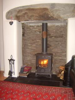 Our Little Wenlock Aga multi fuel wood buring stove