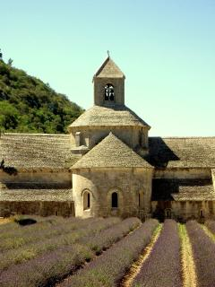 Senanque Abbey is always worth a visit and is stunning when the lavender is in bloom.