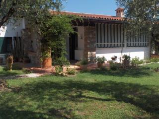 Una casa tra gli olivi del  Garda 2/7 pax +  dog