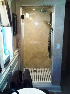 Spa Shower w/ 8 body massage jets ~ Hand Held and Rain Shower Head/Temp. Gauge Human Car Wash  :)