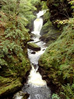 Cynfal Falls - a beautiful waterfall, a lovely walk through ancient woodland from the cottage