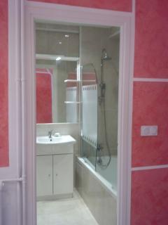 salle de bains avec baignoire + lavabo