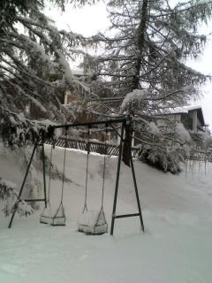 Garden in the winter