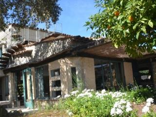 Wonderful Provencal villa with private pool, terrace and balcony