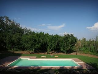 Le Caiole Nocciolo / Hazelnut. The swimming pool.