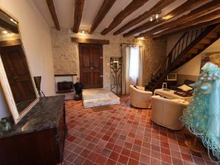 Amelia,luxurious artist's home, Montrichard