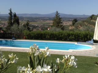 piscina#oleandri#bosco#campagna#collina#panorama#val di chiana#sole#estate#relax#enjoy