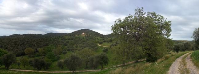 Panoramica del Podere Castello di Vignale