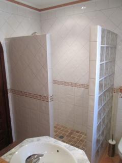 Modern bathroom with massive shower