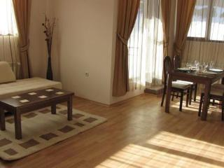 One bedroom apartments in Pamporovo