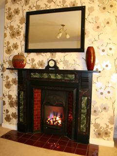 Living flame gas fire for cosy evenings
